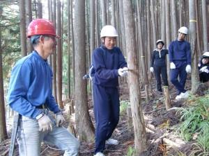 のこぎりで木を切る生徒
